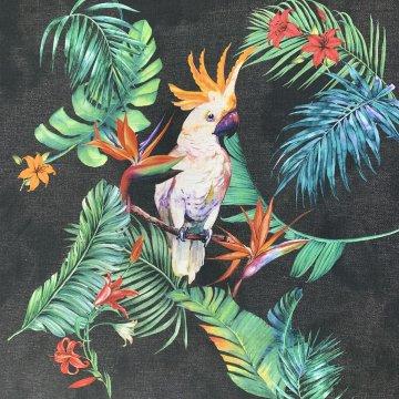 Parrot Panel